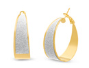 Shimmering Gold Asymmetric Hoop Earrings