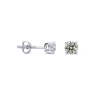 1/3ct Diamond Studs in 14k White Gold